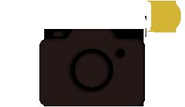 写真撮影プラン